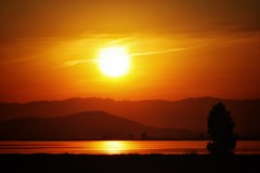 No esperes tenerlo todo para disfrutar de la vida. Ya tienes la vida para disfrutar de todo. (elena m.d.) Tags: tarragona deltadelebro sunset new orange yelow naranja amarillo colores contraluz 2018