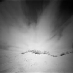 Dune (Rosenthal Photography) Tags: dänemark 20180703 asa125 6x6 realitysosubtle6x6 houvig nordsee düne epsonv800 strand urlaub rodinal15020°c15min ilfordfp4 ff120 mittelformat analog schwarzweiss mountain sand landscape beach dunes denmark danmark mood summer july realitysosubtle rss ilford fp4 fp4plus rodinal 150 epson v800 pinhole