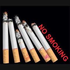 Free Vector no smoking text with burning cigarette (cgvector) Tags: 31stmarch ash cigarette cigarettepaper day drawing filter harmsmoking health injurious nosmoking sign smoke symbol tobacco vector warning