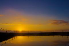 Golden Hour (Danielle Bea Photography) Tags: sunrise photography canon sydney australia landscape nature orange golden goldenhour colour water sea ocean dusk cronulla beach sky rockpool pool