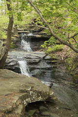 RED02596 (David J. Thomas) Tags: petitjeanstatepark morrilton arkansas hiking caving bedrock forests trees rocks streams creeks waterfalls cedarcreek rockhousecave asgcsymposium