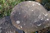 Hutton Fishpond Benchmark (russell_w_b) Tags: huttonintheforest benchmark cumberland cumbria