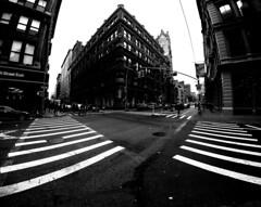 East 19th NYC (MassiveKontent) Tags: streetphotography bwphotography streetshot gopro fisheye architecture geometric lines symmetry building bw contrast city monochrome urban blackandwhite street photo manhattan shadows nyc newyorkcity crosswalk corner newyorkstreet newyorkcitystreet newyork midtown metropolis metropolitan america cityscape