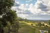 Bistro Molines (vk2gwk - Henk T) Tags: huntervalley vineyards hills nsw australia