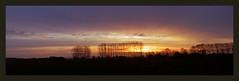 013422 2015 20 December Sunrise Raalte The Netherlands C (mensinkr) Tags: sunset zonsondergang sky lucht grass gras forest bos tree bomen skyline horizon vliegtuig airplane dusk evening avond avondrood