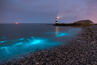 'Blue Waves' - Penmon Point, Anglesey