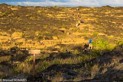 Petroglyphs, Volcanoes National Park, Hawaii, US (Manuel ROMARIS) Tags: usa petroglyph hawaii puuloatrail hawaiivolcanoesnationalpark pāhoa unitedstates us