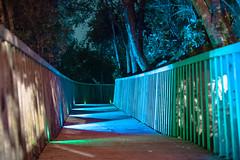 DSC08240 (SunThroughEyelids) Tags: nature green art ambient adventure awesome amazing a7ii aqua auckland landscape dark makro car night light follow hiking travelling exposure sky u