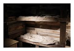 Dans l'abri... - Musée de la Grande Guerre (DavidB1977) Tags: france îledefrance seineetmarne meaux muséedelagrandeguerre wwi fujifilm x100f musée abri lit