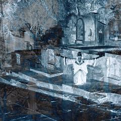 ☠️ Hallucinations 💀 (Iuri Vovchenko Юрий Вовченко) Tags: юрий вовченко vovchenko strange images dark gotic goth gotica cemetery hallucination death dead graveyard 35mm film kodak analogic fine art blue sepia iuri