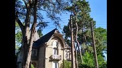 MOVIE (marsupilami92) Tags: frankreich france paysdelaloire loireatlantique 44 labaule lecroisic villa atlantique