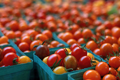 Cherry Tomatoes (Ian Sane) Tags: ian sane images cherrytomatoes portland state university campus farmers market produce fruit depthoffield bokeh perspective canon eos 5ds r camera ef50mm f14 usm lens