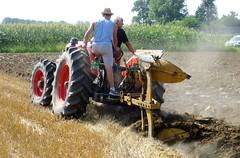 Same 480 DT (samestorici) Tags: trattoredepoca oldtimertraktor tractorfarmvintage tracteurantique trattoristorici oldtractor veicolostorico araturadepoca