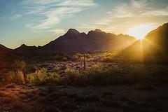 Phoenix... beautiful... HOT.AS.HELL (Blair Bunting) Tags: blair bunting advertising photographer
