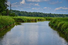 Back River along Island Road - Jamestown VA (mbell1975) Tags: williamsburg virginia unitedstates us back river along island road jamestown va usa america water creek marsh swamp wetland wetlands