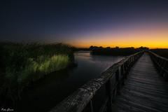Anochecer en Las Tablas de Daimiel (Peideluo) Tags: night nature landscape landscapenight lighpainting pasarela light cielo agua landscapewater nikon d7100