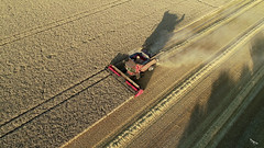 Harvest 2018 (soaringviews) Tags: harvest winchester morestead tmgrahamandpartners dji phantom4pro phantom aerial aerialphoto combine tractor field fields
