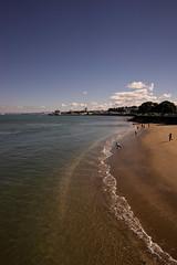 The Beach. (malcolmgrant2) Tags: samyang24mm beach wave devonport sonya7