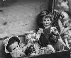 ohne Titel (wpt1967) Tags: canon6d eos6d gesichter puppe puppen teddybär teddybären doll face faces teddy wpt1967