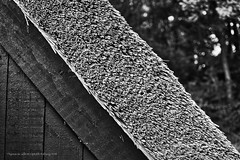 Thatched house. Choza. (ithyrsus) Tags: nikon nikond5200 d5200 luminar affinityphoto thatchedhouse thatched traditionalarchitecture geometry esbjerg denmark dinamarca europa europe eu ue