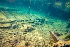 Heron Island Snorkel Underwater-18 (Quick Shot Photos) Tags: aquatechimagingsolutions canon canoncollective heronisland padi queensland scuba underwater snorkel bogie australia au