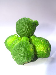 Bergamot Fruit (www.icon0.com) Tags: fruit bergamot green herb vegetable lime citrus ingredient rough food asian fresh kaffir cooking lemon cuisine organic thai background tropical white herbal isolated healthy aroma natural hair thailand raw produce ancient asia treatment freshness juicy sour tree spice tasty orange