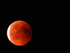Red Moon (Tanja-Milfoil) Tags: camera bridge p610 nikon milfoil tanja redmoon eclipse luna moon 2018 270718 blutmond mondfinsternis mond