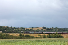 60009 Scurries past Newton St Lowe (g4vvz) Tags: lner a4 john cameron pacific 462 60009 union south africa fire risk uk bath somerset rain dry grass grey clouds steam smoke br green
