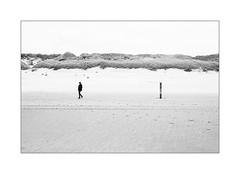 A force de t'attendre. (Scubaba) Tags: europe paysbas noirblanc noiretblanc blackwhite bw plage dunes sable femme piquet poteau beach sand woman pole stake