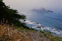 20180724-00074.jpg (tristanloper) Tags: tristanloper creativecommons film nikonf6 california bigsur pacificcoast highway1 pacificocean pfeifferbeach cypress fog mist