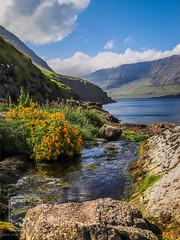 Vicareidi View (fentonphotography) Tags: faroeislands orangeflowers landscape seascape bluesky mountains rocks vidoyisland vidareidi stream bwf viðareiði northernisles fo