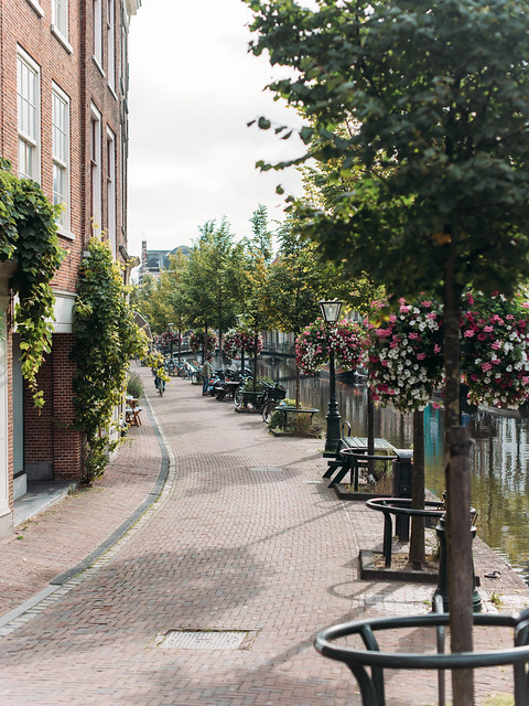 2017荷蘭自助旅行-1100