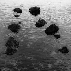 Lava Shallows 012 (noahbw) Tags: d5000 hawaii nikon abstract blackwhite blackandwhite bw distortion landscape lava minimal minimalism monochrome natural noahbw ocean reflection ripples rock shallows shore shoreline square stone water