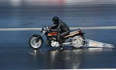 Suzuki_1953 (Fast an' Bulbous) Tags: dragbike racebike bike biker moto motorcycle fast speed power acceleration santapod dragstalgia nikon outdoor motorsport