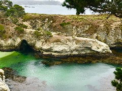 Hidden Cove (tmrae) Tags: carmel coastaltherapy pointlobos hiddencove