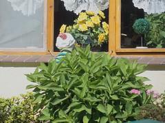 * (Reginald_9) Tags: august 2017 germany spreewald channel
