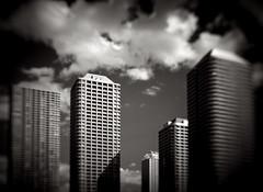 (Masahiko Kuroki (a.k.a miyabean)) Tags: bw architecture monochrome noiretblanc xe2 lensbaby trio28 東京