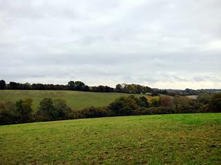 GOC Cholesbury to Chartridge 005: Landscape