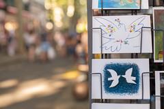 Trío de palomas (Nathalie Le Bris) Tags: céret mercado marché postal picasso braque paloma paz colombe paix peace bokeh