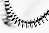 whisk (Francis Mansell) Tags: whisk utensil monochrome blackwhite dof depthoffield niksilverefexpro2 filmgrain spring spiral helix curve shadow blur