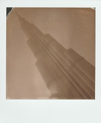 The One and Only • PolaroidWeek | Day 1/2 (o_stap) Tags: filmisnotdead impossibleproject polaroid600 polaweek roidweek polaroidweek polaroid believeinfilm