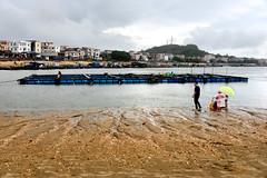 Fishing harbour (MelindaChan ^..^) Tags: yangxi china ferry chanmelmel mel melinda melindachan boat life mudflat lowtide people transportation transport water fisherman village rural 陽西 上洋鎮 guangdong