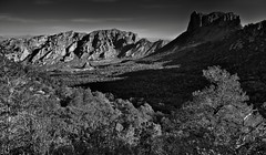 Taking in the Full Breadth of the Chisos Mountains and Basin Below (Black & White, Big Bend National Park) (thor_mark ) Tags: nikond800e day2 triptobigbendnationalpark bigbendnationalpark lookingne casagrande pulliampeak silverefexpro2 blackwhite capturenx2edited colorefexpro desert desertlandscape desertplantlife desertmountainlandscape outside nature landscape sunny blueskies mountains mountainsindistance mountainsoffindistance mountainside trees hillsideoftrees chihuahuandesert chisosbasin rollinghillsides hiketosouthrimtrail southrimtrail southrimloop casagrandepeak usbiospherereserve intermountainwest southwestbasinsandranges transpecostexasranges bigbendranges mounthuffman project365 portfolio tx unitedstates