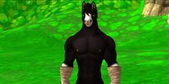 5c1551dcc798c86e8f0a0dc998d244e8 (jeanluker34) Tags: furry sl horse brown white secondlife game simulator