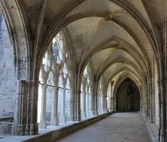 1715 ABBAYE DE SAINT-WANDRILLE (rustinejean) Tags: rustine abbaye saintwandrille monuments