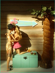 Travis and Tris ♥ (Mary (Mária)) Tags: summer barbie ken diorama divergent vacation holiday palm flamingo coconut handmade tris four love doll dollphotography dollcollector fashon mattel sun couple toys