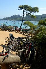 Porquerolles by bike (moniq84) Tags: velo bike bici porquerolles ile island green nature sea landscape seascape beach boats france cote d azure costa azzurra provence plage notre dame tree