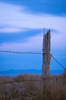 Blue Hour Barbed Wire