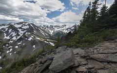 Olympics from Lillian Ridge (TW Olympia) Tags: olympic mountains washington state lillian ridge shale
