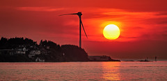 Hot summer evening, Norway (Vest der ute) Tags: norway rogaland sea water sky clouds sunset houses windmill fav25 fav200